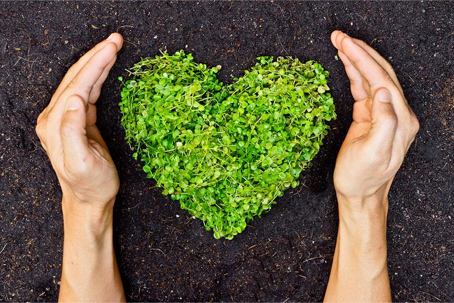 Celebrating and communicating sustainability goals